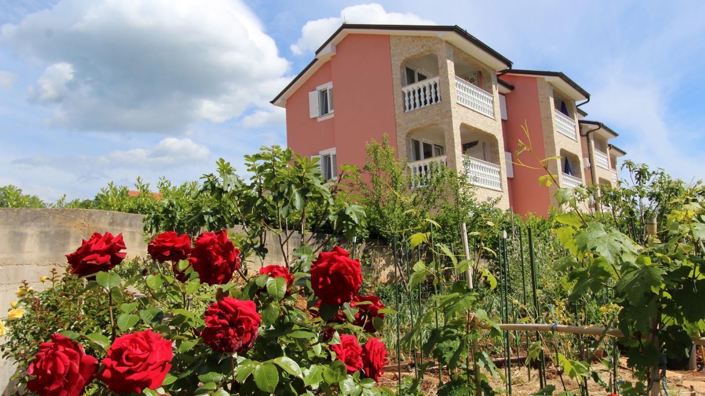 Ferienwohnungen Jela, Insel Krk, Malinska